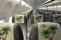 ニュース画像 5枚目:機内のヘッドレスト イメージ