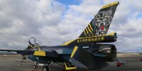 第8飛行隊、創隊60周年特別塗装機 尾翼に黒ヒョウの画像