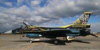 ニュース画像 3枚目:F-2A「13-8558」、特別塗装は例年12月ごろに開催される航空祭シーズンまで