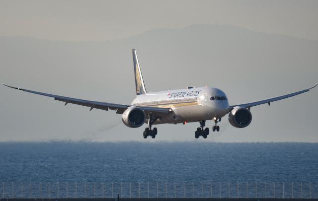 ニュース画像 1枚目:シンガポール/名古屋(セントレア)線を運航するシンガポール航空のボーイング787-10(tamtam3839さん撮影)