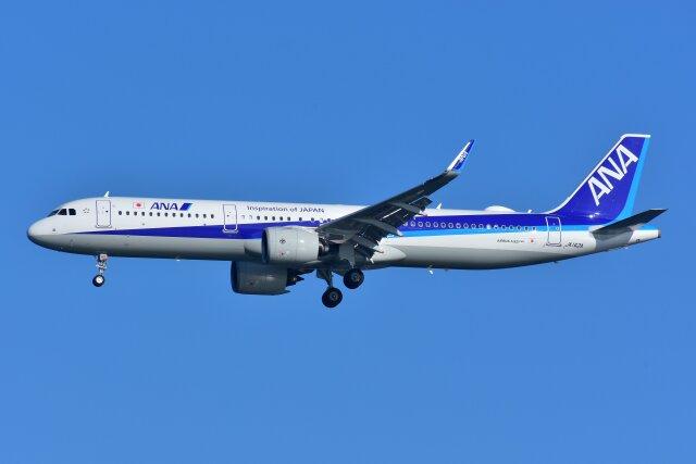 ニュース画像 1枚目:ANA A321neoイメージ(islandsさん撮影)