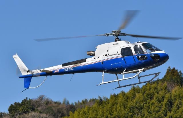 ニュース画像 1枚目:東邦航空 イメージ (ブルーさんさん撮影)