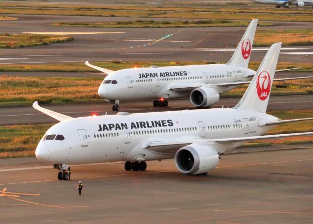 ニュース画像 1枚目:JAL 787-8 イメージ