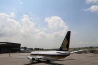 ニュース画像 3枚目:シンガポール航空 737-800