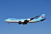 ニュース画像:大韓航空、貨物事業で営業利益は黒字 貨物機の稼働高まる