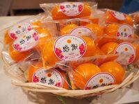 ニュース画像:宮崎空港ショップ、購入者に特産品「きんかんたまたま」プレゼント
