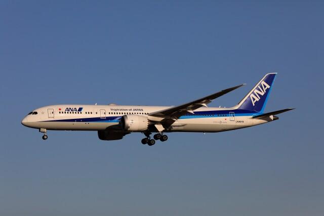 ニュース画像 1枚目:ANA 787-9 イメージ