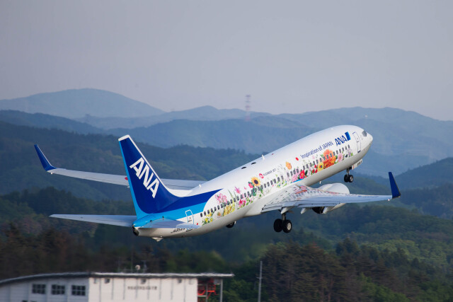 ニュース画像 1枚目:福島空港での東北FLOWER JET 特別塗装機 (paje0433さん撮影)
