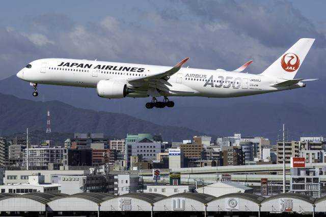 ニュース画像 1枚目:JALイメージ(K.Sさん撮影)