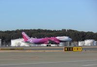 ニュース画像:ピーチ、成田/大分線に就航 成田・関空の国内線は12路線に