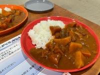 ニュース画像:人気の飛行機ご飯、ANAラウンジ チキンカレー 自宅で実食