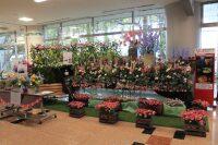 ニュース画像:宮崎空港、春の花まつり「フラワーオブジェ」展示
