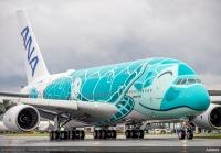 ニュース画像:ANA FLYING HONU、GWなどに成田発着で計7回遊覧フライト