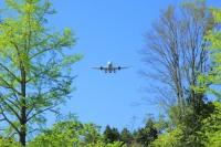 ニュース画像:成田国際空港、CO2排出量を実質ゼロへ 2050年度目標