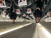 ニュース画像:東京・江戸川区、JAL客室乗務員35名を区職員として採用