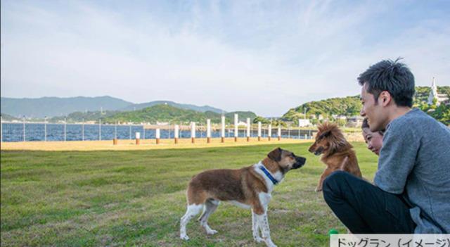 ニュース画像 1枚目:ANA「わんわんフライト in 長崎」ツアー宿泊施設のドッグラン(イメージ)