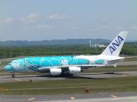 ニュース画像:ANA、5月の機内食レストラン 成田駐機中のA380フライング・ホヌで