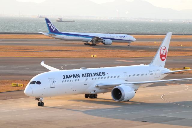 ニュース画像 1枚目:JAL・ANAイメージ(クロマティさん撮影)