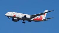 ニュース画像:JALとANA、聖火特別輸送機モデルプレーン当たるSNSキャンペーン