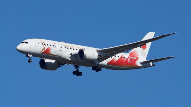 ニュース画像 1枚目:聖火特別輸送時の特別塗装が施された「JA837J」 (AquablueSkyさん撮影)
