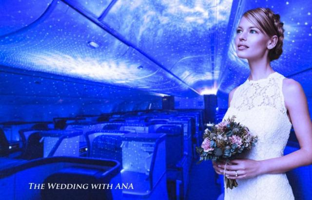 ニュース画像 1枚目:機内での挙式に使用する銀河照明 イメージ