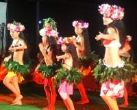 ニュース画像:セントレア、ハワイ気分楽しめる「フラ・フェスティバル」