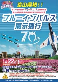富山初のブルーインパルス展示飛行、YouTubeで配信の画像