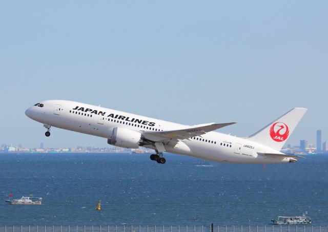 ニュース画像 1枚目:現在はZIPAIRに移管、JAL時代の「JA822J」 (eipansさん撮影)