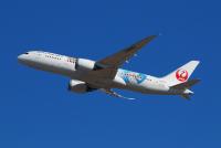 ニュース画像 3枚目:JAL787初の特別塗装「JAL×ジブリ特別塗装」 (KRN6035さん撮影)