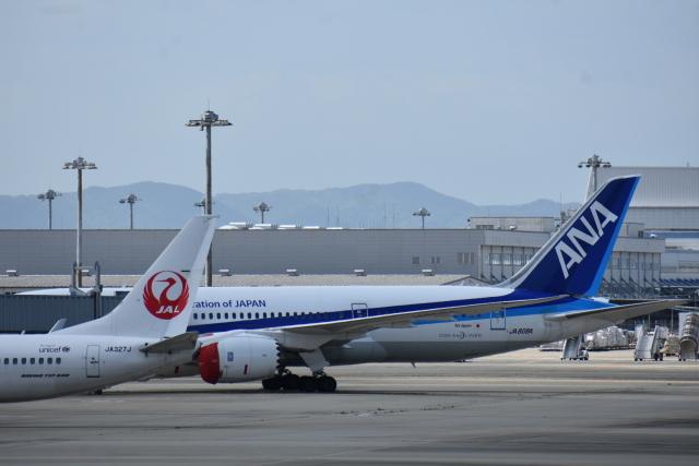 ニュース画像 1枚目:JAL、ANAイメージ(空が大好き!さん撮影)