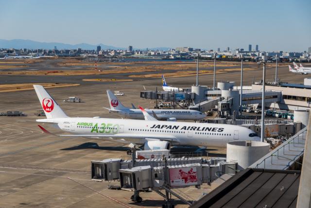 ニュース画像 1枚目:羽田空港 イメージ (delawakaさん撮影)