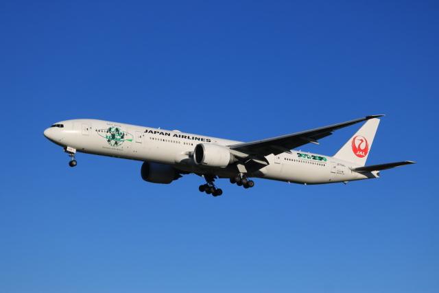 ニュース画像 1枚目:JAL ボーイング777 イメージ (JA8075さん撮影)