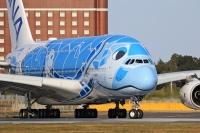 ニュース画像:ANA「A380フライング・ホヌ遊覧飛行」当たるnanacoキャンペーン