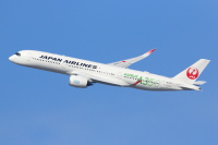 JAL、5月は5度目の減便調整 6月は運航率68%の画像