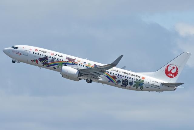 ニュース画像 1枚目:JTA 737-800型機イメージ (sachiさん撮影)