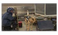 ニュース画像:成田空港、オリ・パラ前にCBRNEテロ事案発生に備え訓練