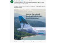 ニュース画像:全機異なる野生動物を尾翼に描くフロンティア航空、新種登場