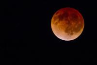 ニュース画像:皆既月食 20時09分頃から、オーストラリアではチャーター便も
