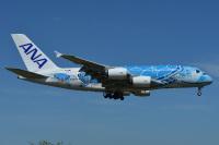 ニュース画像:ANA、8月の成田/ホノルル線 500日ぶりA380投入