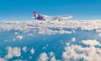 ニュース画像:ハワイアン航空、マウイ島への航空券当たるアンケートキャンペーン