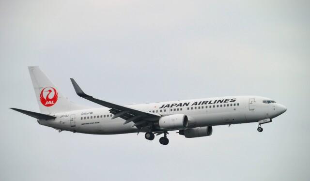 ニュース画像 1枚目:JAL 737-800