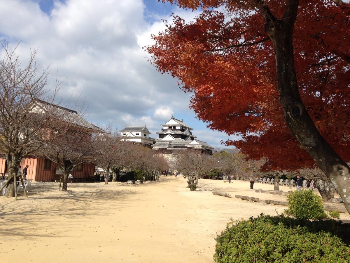 ニュース画像 5枚目:松山城イメージ(airdrugさん撮影)