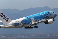 ニュース画像:ANA A380「フライングホヌ」チャーターフライトってどう?みんなの体験記