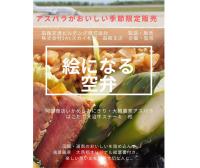 ニュース画像:函館空港とJAL、季節・数量限定で地元産品利用した「絵になる空弁」販売