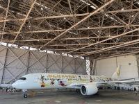 ニュース画像:金色鶴丸塗装、みんなのJAL2020ジェット3号機 オリンピック前にきょう就航