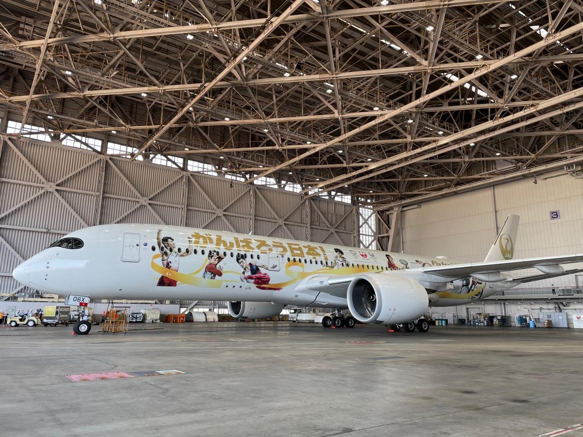 ニュース画像 9枚目:JALのゴールド塗装は1機のみ、これを見れたら幸運が舞い込む!?
