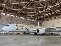 ニュース画像 6枚目:JALのゴールド塗装は1機のみ、これを見れたら幸運が舞い込む!?