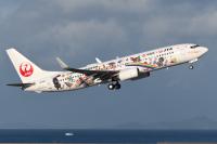 ニュース画像 2枚目:目指せ!! 奄美・沖縄世界自然遺産登録 世界自然遺産号 2021 機体右側 (sky77さん撮影)