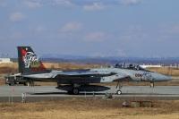 ニュース画像 4枚目:複座型のF-15DJ、第201飛行隊創隊30周年記念塗装機 (ペア ドゥさん撮影)