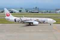 ニュース画像:JAL、奄美・沖縄の世界自然遺産登録 特別塗装機投入など取り組み継続